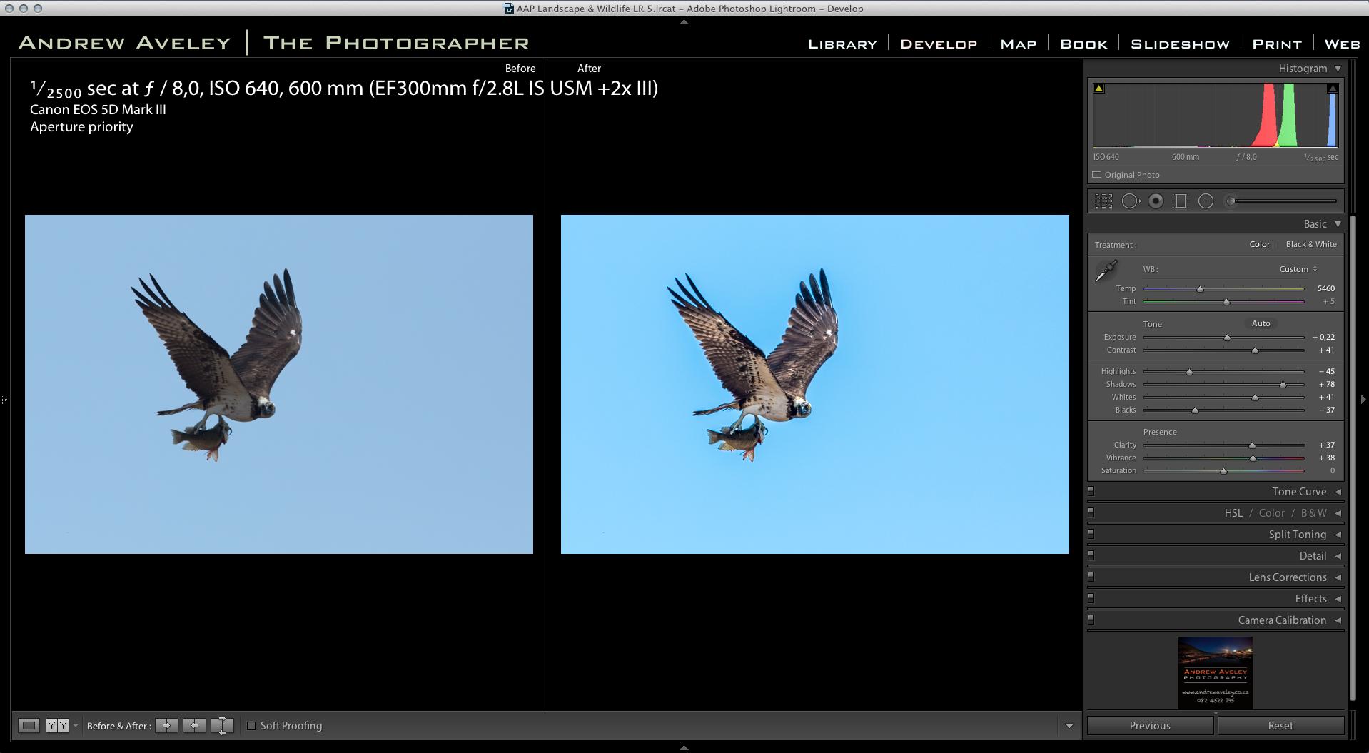 Screen Shot 2014-11-12 at 7.56.27 AM