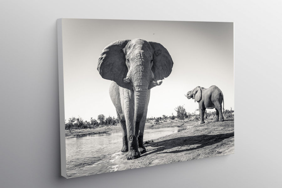 Buy online - Framed Prints by Andrew Aveley, Wall Art, Fine Art, Interior Decor, Canvas Frames