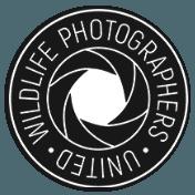 Remembering Wildlife - Wildlife Photographers United