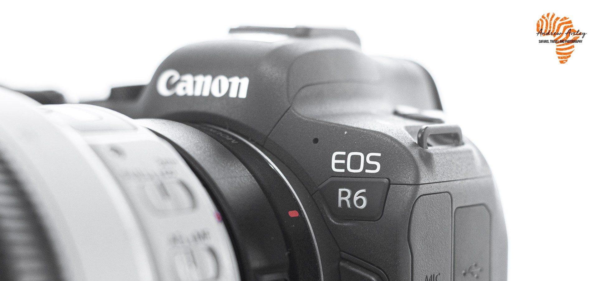 Canon R6 Image